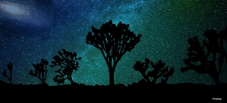 כותרתצלליות עצי יהשע וברקע שביל החלב