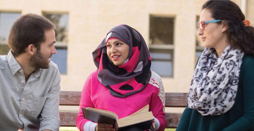 תכנית ההטמעה בערבית